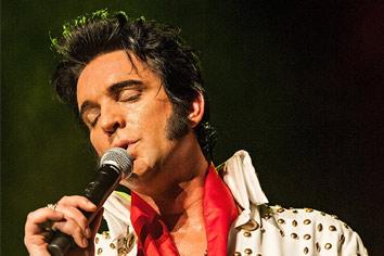 Elvis-Artilel
